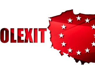 Prezes: Rozpoczniemy proces wyjścia Polski z UE