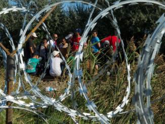 kryzys imigracyjny