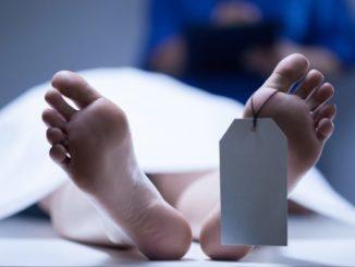 Makabra w kostnicy
