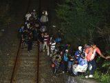 11 milionów cudzoziemców w Niemczech. Ile Polaków?