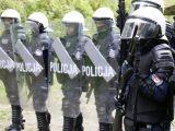 POLICJA ponownie kupuje DUŻE ILOŚCI AMUNICJI do strzelb gładkolufowych