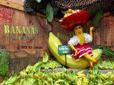 Atomowa republika bananowa-widziane z USA