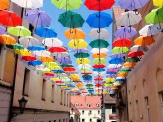 Radny z PiS walczy z kolorowymi parasolkami