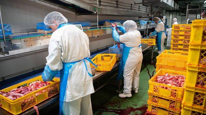 Mamy rekordową liczbę pracowników z Ukrainy. A rąk do pracy nadal brakuje
